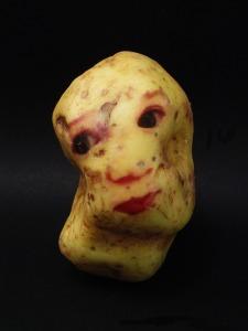 Ginou Choueiri - Potato Portraits